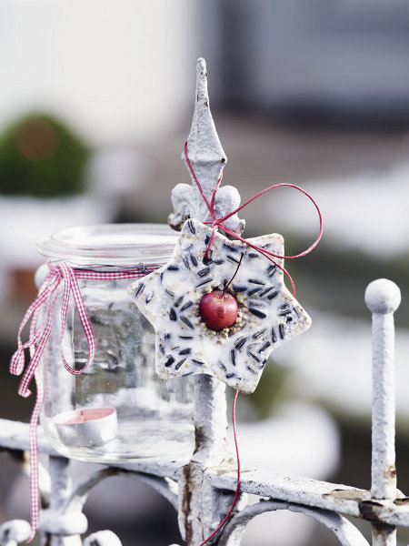 garden-christmas-decoration-ideas-star-bird-food-seeds-meled-lard
