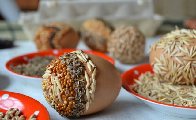 easter eggs ideas eco-friendly Dill seed oats glue