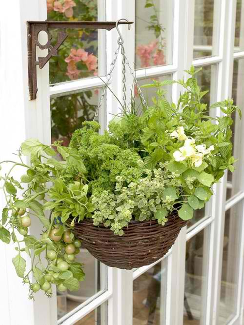 Flowers-fresh-air-at-home-diy-masters-com-2014-006