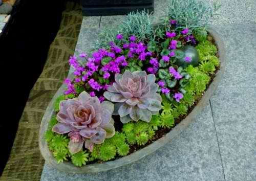 Flowers-fresh-air-at-home-diy-masters-com-2014-012