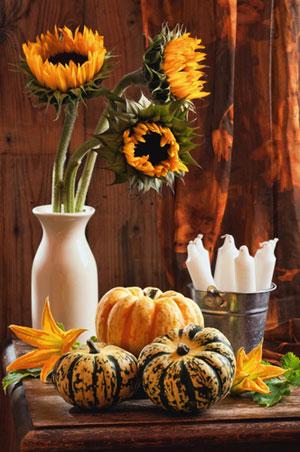 Halloween-mood-at-home-diy-masters-001