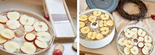 Quick-ideas-for-decor-with-apples-diy-masters-004