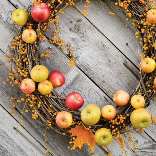 Quick-ideas-for-decor-with-apples-diy-masters-021