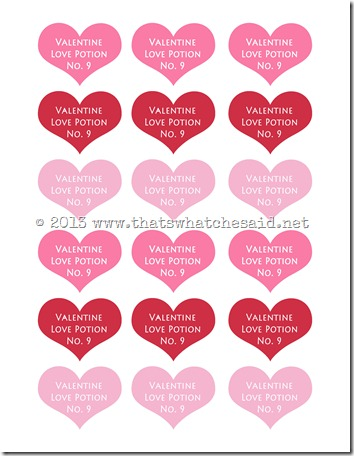 love-potion-valentine-idea-free-printable-img004