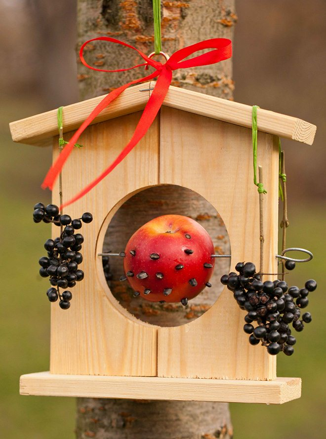diy-bird-feeders-3-easy-and-original-ideas-to-make-001