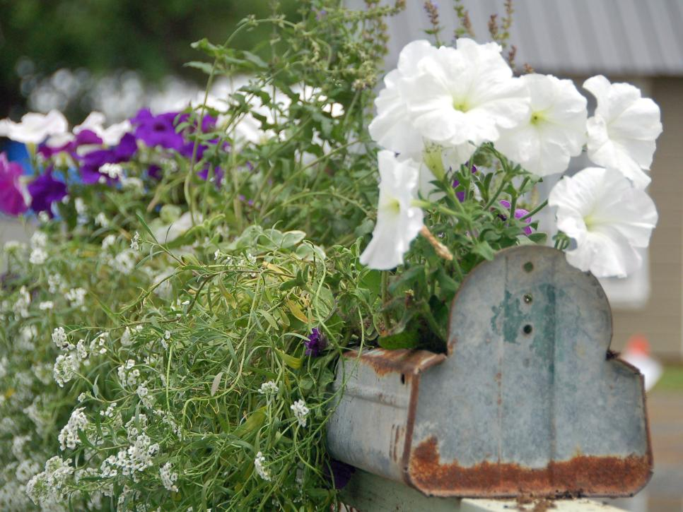 13-unusual-and-upcycled-container-gardens-img006