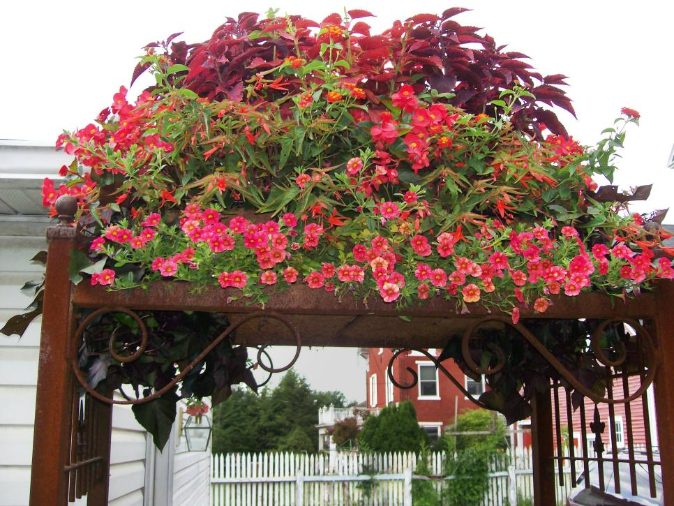 13-unusual-and-upcycled-container-gardens-img008