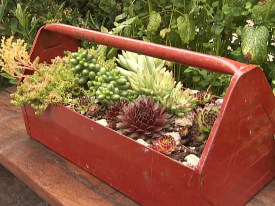 13-unusual-and-upcycled-container-gardens-img015