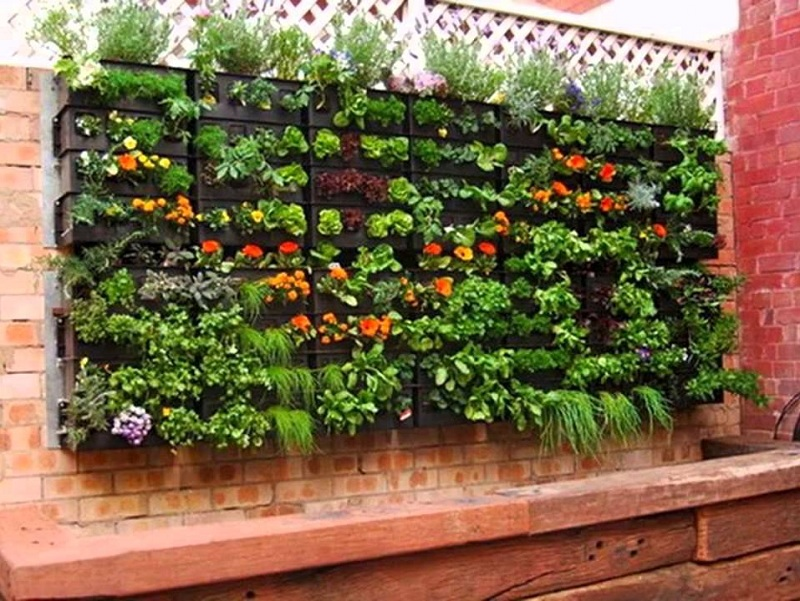 ideas-for-gardening-narrow-balconies-15
