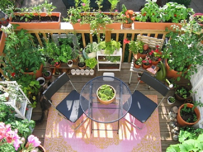 ideas-for-gardening-narrow-balconies-18