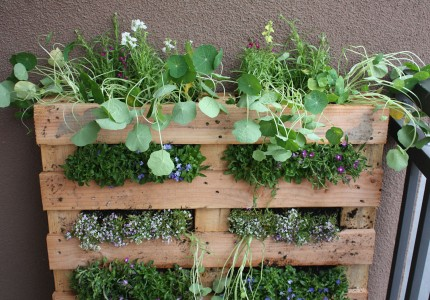 ideas-for-gardening-narrow-balconies-2