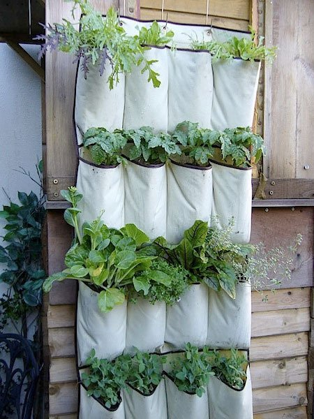 ideas-for-gardening-narrow-balconies-5