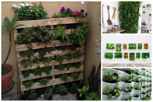 vertical-garden-the-magic-of-the-green-wall-img001-500x334