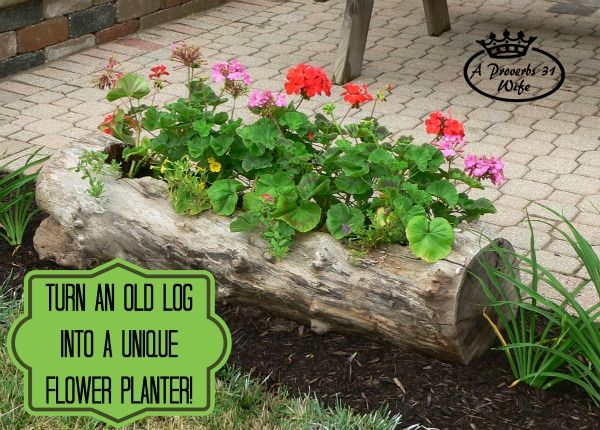 Home DIY Garden Projects Making A Log Planter For Flowers