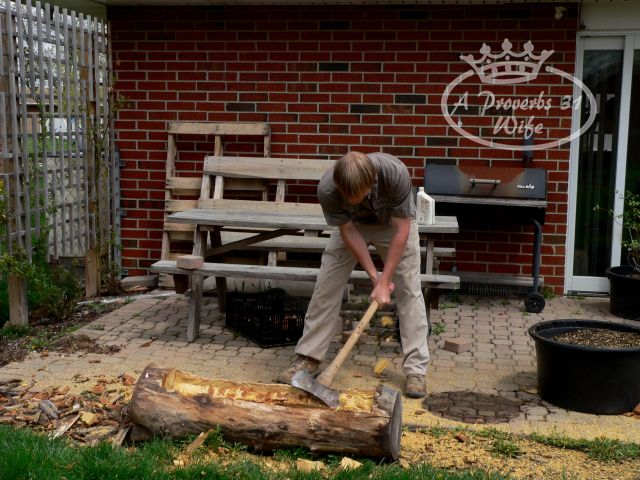 making-a-log-planter-for-flowers-diy-masters-img001