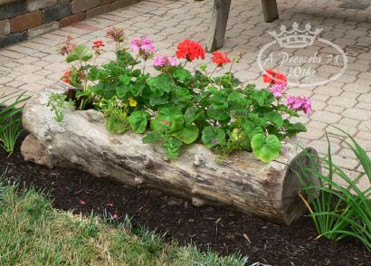 making-a-log-planter-for-flowers-diy-masters-img006