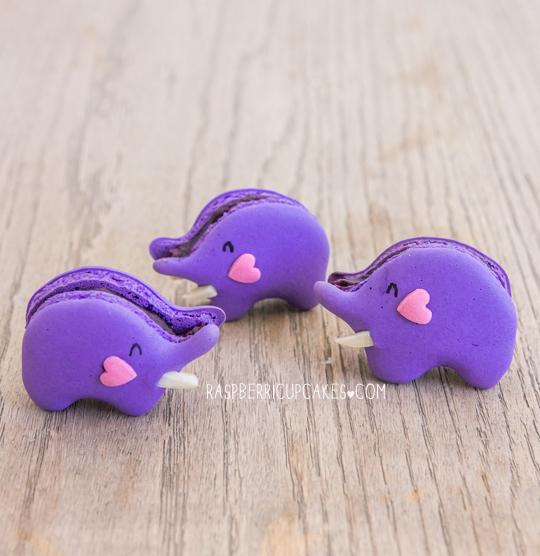 blueberry-elephant-macarons-diy-masters-img001