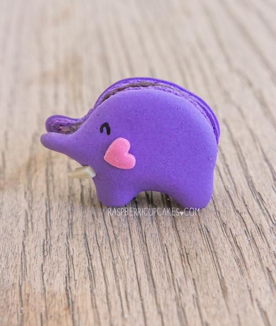 blueberry-elephant-macarons-diy-masters-img002