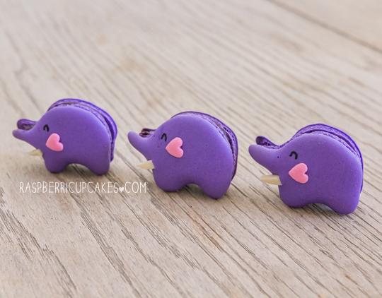 blueberry-elephant-macarons-diy-masters-img004